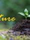 Plusieurs fiches Nature sont disponibles en téléchargement